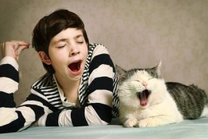 7 natural cat sedatives for-travel yawning cat and boy