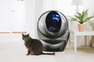 Do hooded litter boxes help with smell?