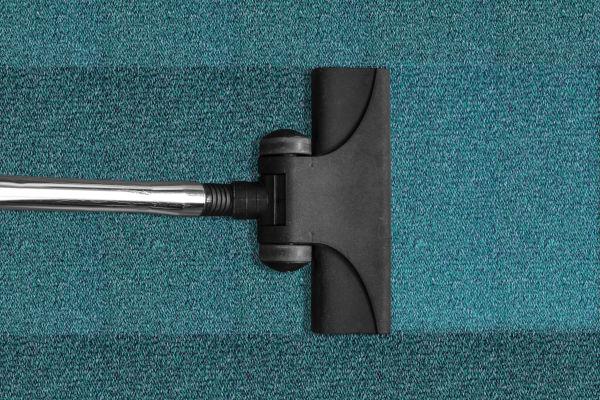 Should I vacuum after flea spray?