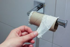 How to keep cat from destroying toilet paper?