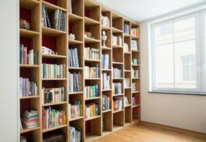 Cat-proof Bookshelf