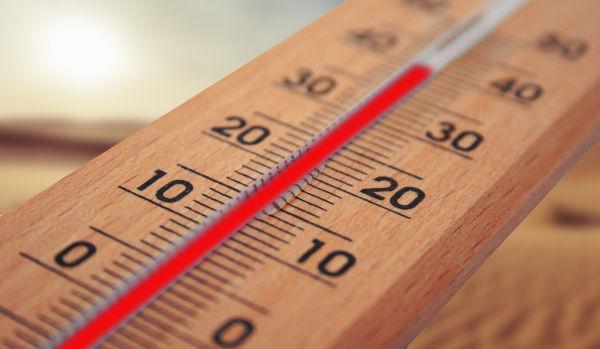 Feliway overheating?