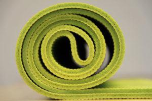 Cat proof yoga mat?